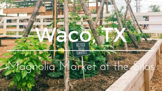 Waco, TX-2 Magnolia